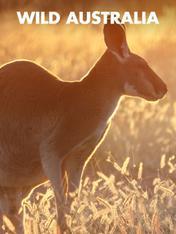 S1 Ep1 - Wild Australia