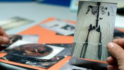 Il collezionista di ossa