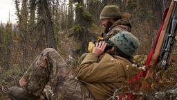 A caccia di orsi