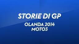 Olanda, Assen 2014. Moto3