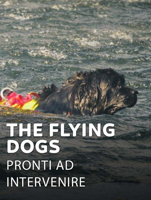The Flying Dogs - Pronti ad intervenire