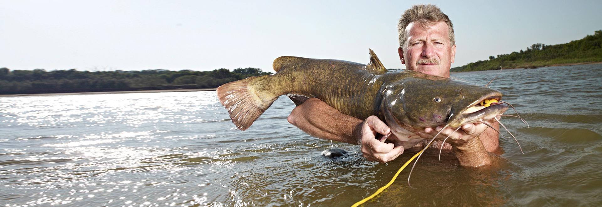 Pesca a mani nude