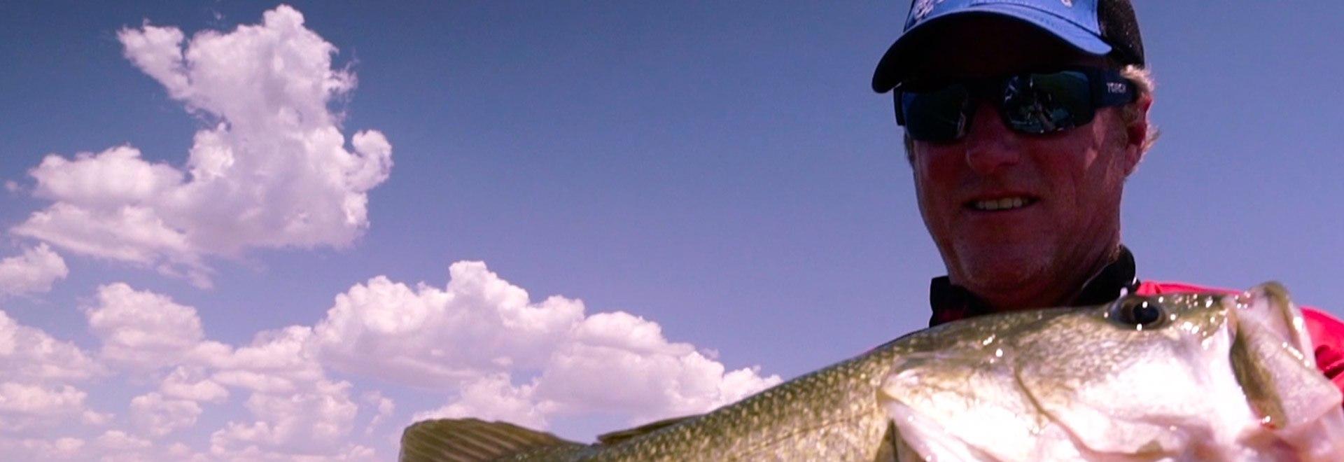 I bass del Lago Falcon