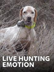 S4 Ep4 - Live Hunting Emotion 4