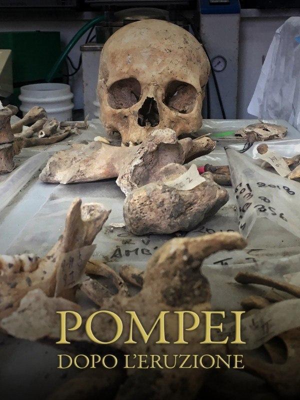Pompei - Dopo l'eruzione