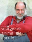 Giorgione: orto e cucina - Animali da cortile