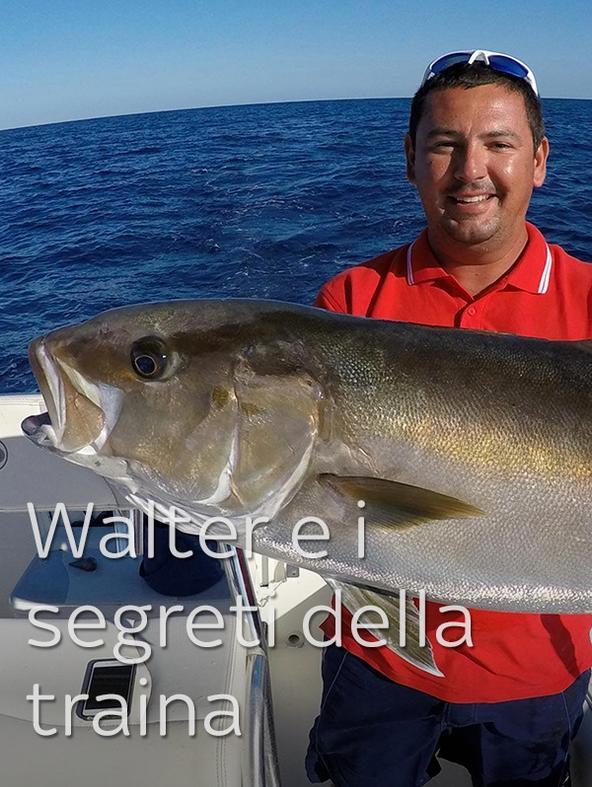 Walter e i segreti della traina 2