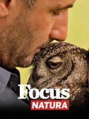 S1 Ep1 - Focus natura