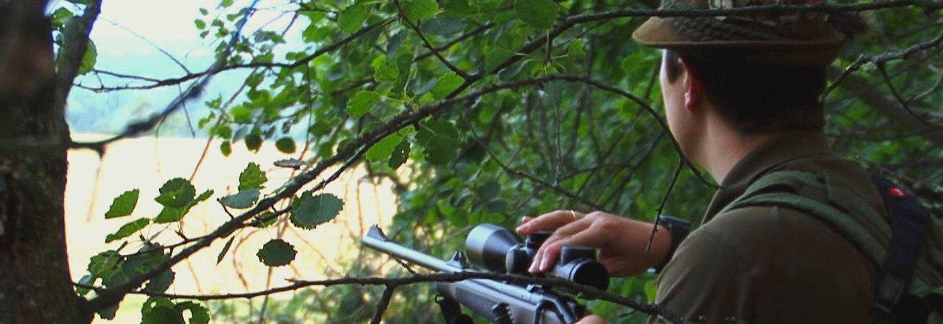 Pirsch: Scuola di caccia alla cerca
