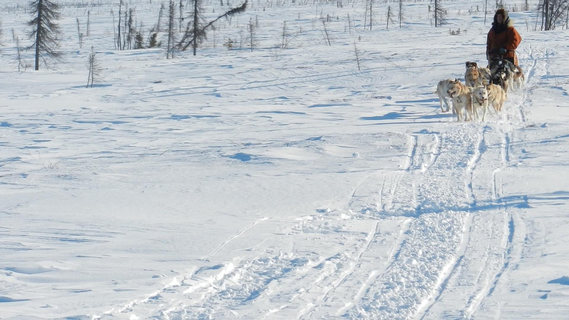 Discovery +1 Yukon Men: gli ultimi cacciatori