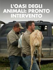 S3 Ep3 - L'oasi degli animali: pronto intervento