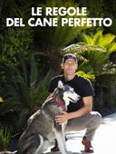 Le regole del cane perfetto