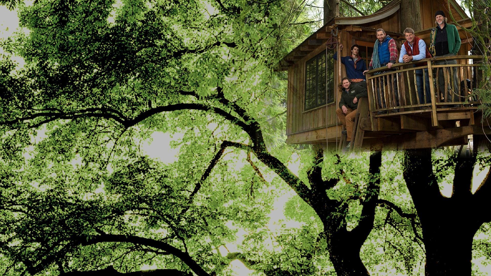 Home and garden La mia nuova casa sull'albero