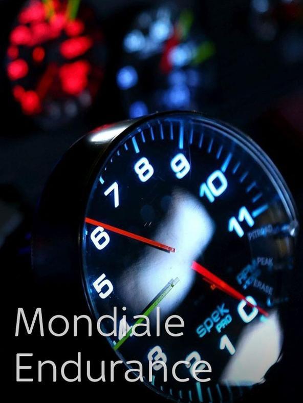 Automobilismo: Mondiale Endurance (li...
