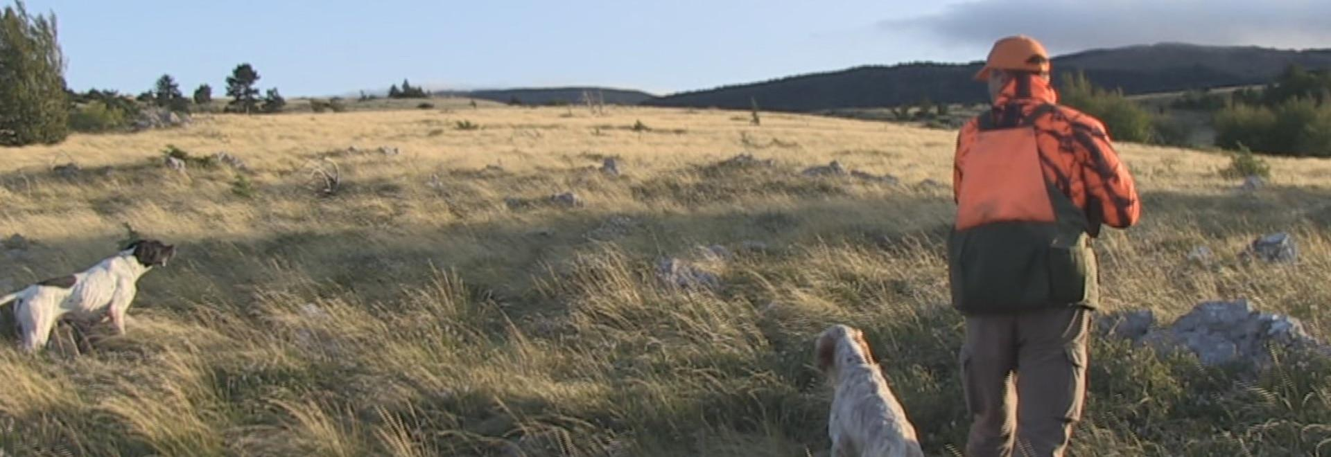 Caccia ai tordi in Friuli, secondo giorno