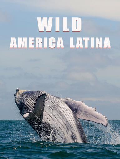 S1 Ep1 - Wild America Latina