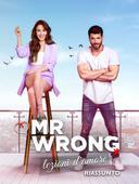 Riassunto - Mr Wrong - Lezioni d'amore