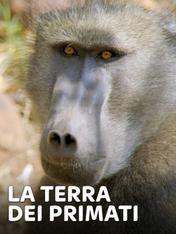 S1 Ep4 - La terra dei primati