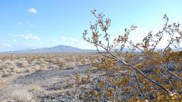 I misteri della Death Valley