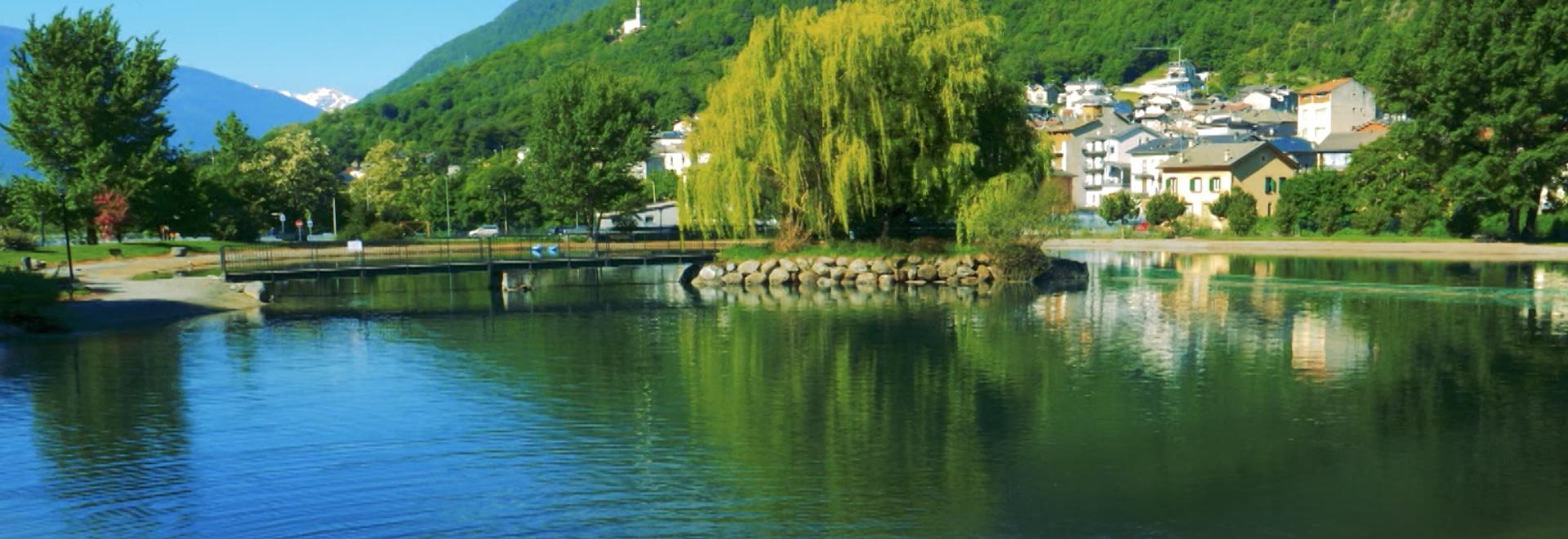 I Persici Reali nel lago di Vico