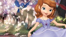 Il balletto della principessa
