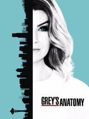 S13 Ep15 - Grey's Anatomy