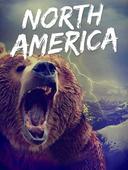 Wild Planet: North America
