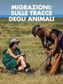Migrazioni: sulle tracce degli animali