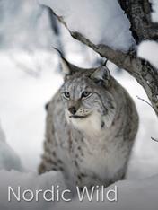 S1 Ep1 - Nordic Wild