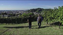 Giusti wine / Ritorno sul montello