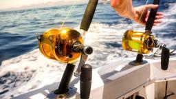 Reality Fishing: a pesca nel Mediterraneo 1 - Stag. 1 Ep. 7 - A pesca con le softbaits. 1a parte