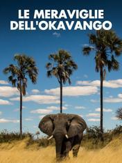 S1 Ep3 - Le meraviglie dell'Okavango