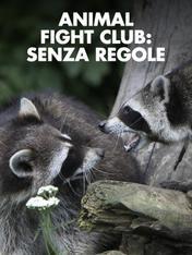 S3 Ep1 - Animal Fight Club: senza regole