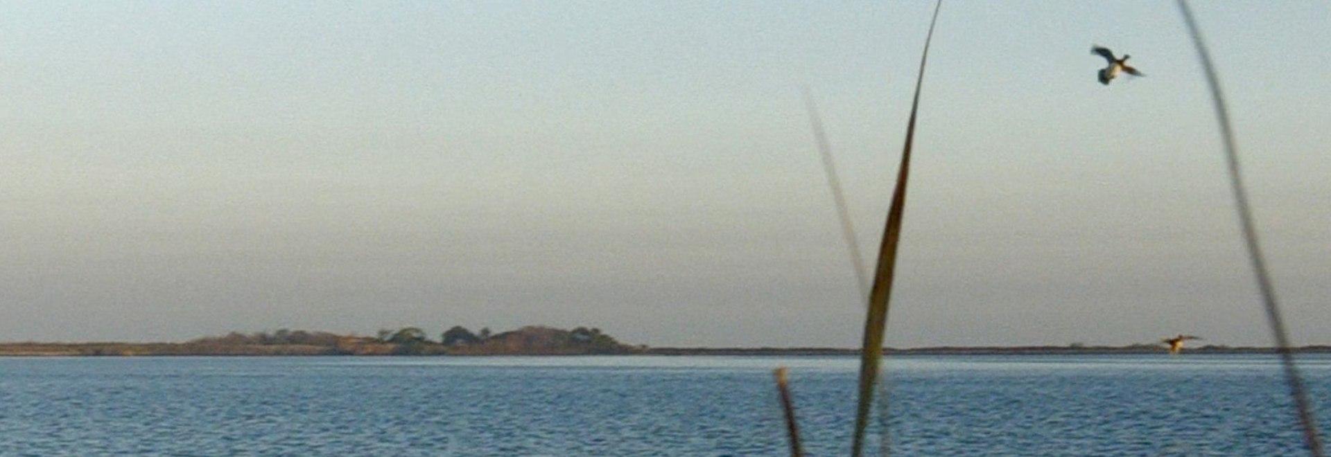 La Laguna di Grado. 2a parte