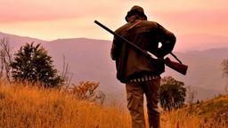 FIDASC tra cinofilia e armi da caccia