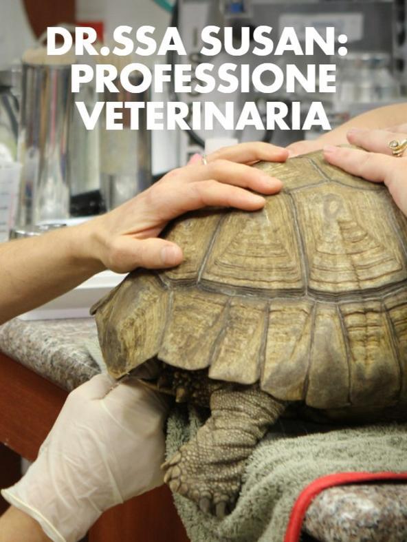 Dr.ssa Susan: professione...