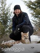 America selvaggia