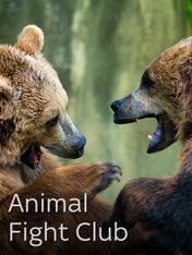 S4 Ep2 - Animal Fight Club