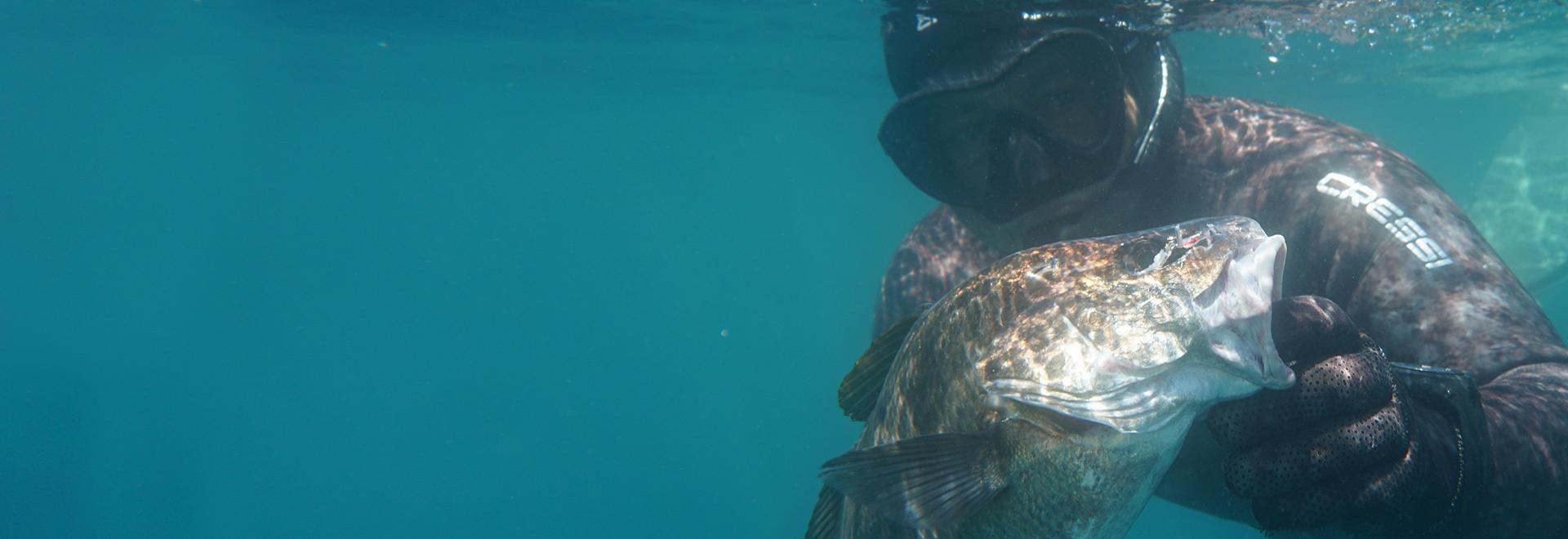 Parliamo di pesca in apnea