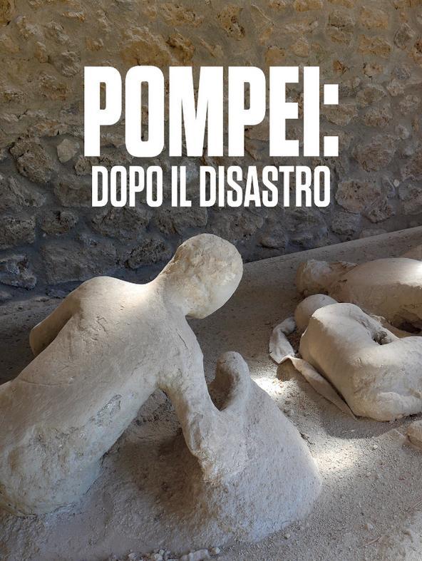 Pompei: dopo il disastro -