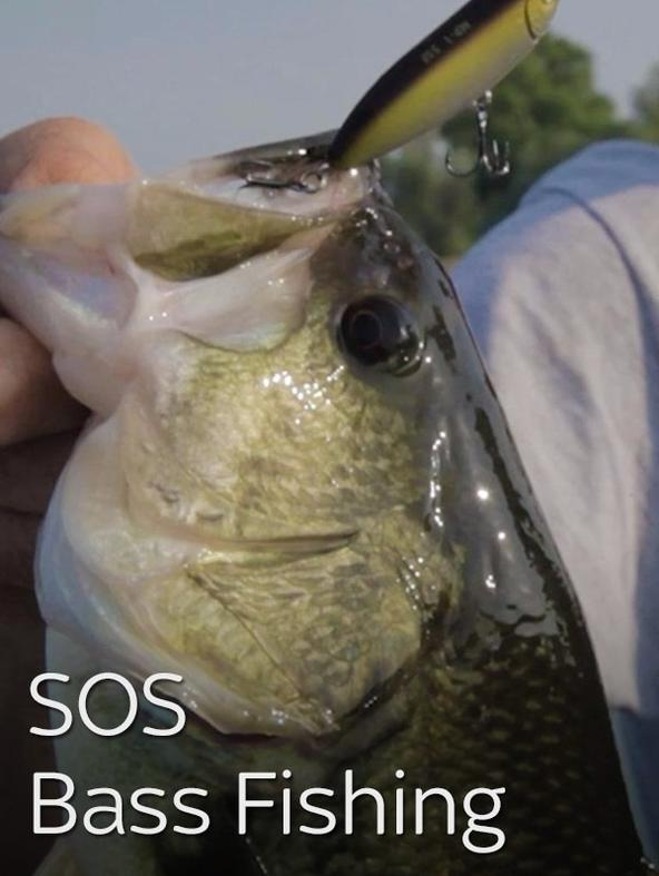 SOS Bass Fishing 3