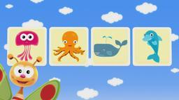 Animali acquatici / Le dimensioni degli animali / Le parti del corpo