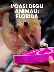 S2 Ep3 - L'oasi degli animali: Florida