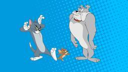 Il gatto di piombo di domani / Tom mister muscolo / Tom gatto superstar