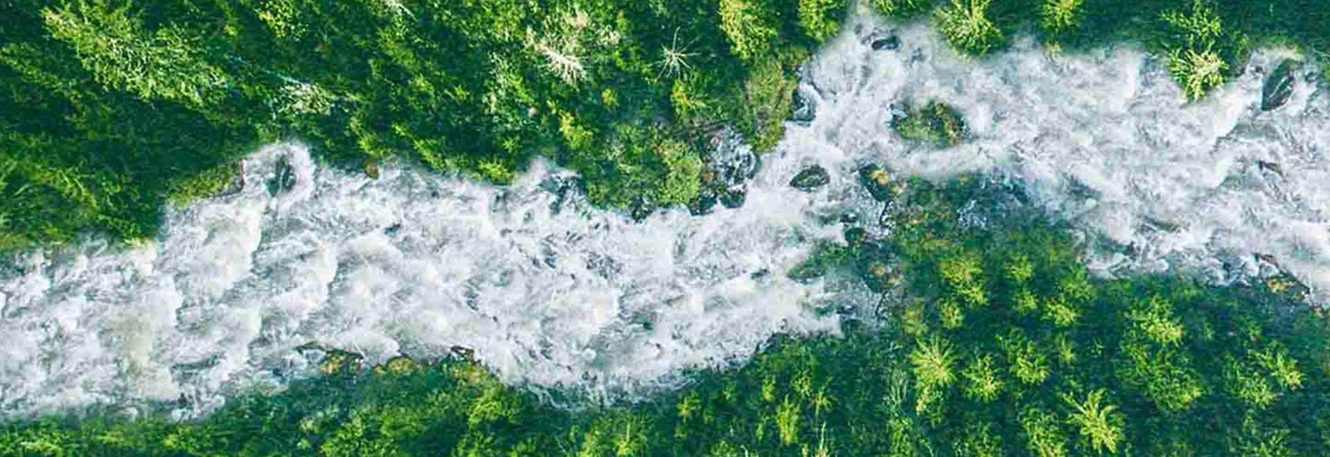 I ribelli del fiume
