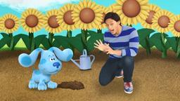 Il giardino di Blue