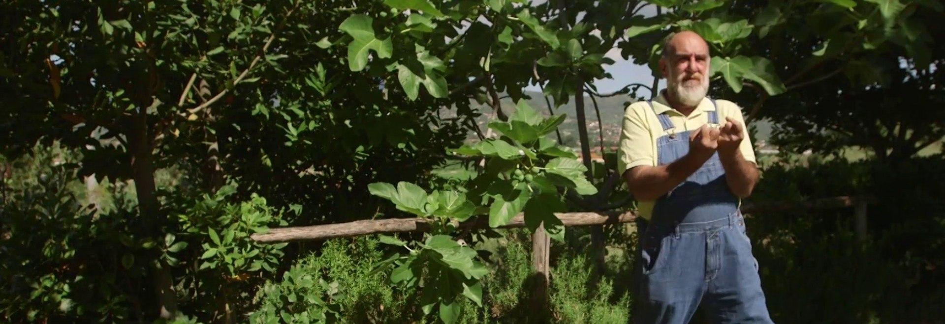 Giorgione: orto e cucina - Cilento