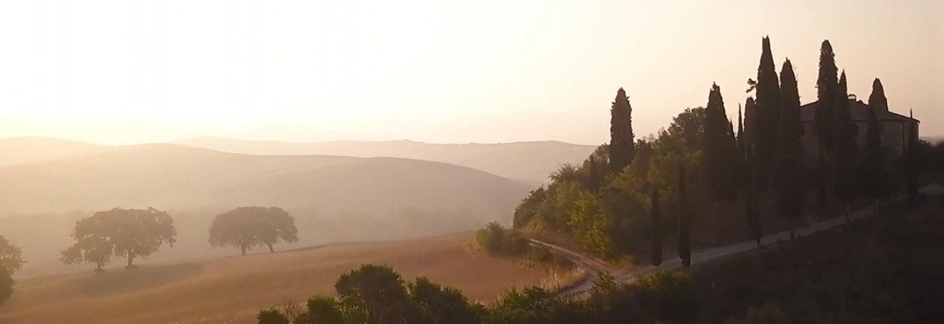I vini nobili della Toscana