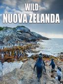 Wild Nuova Zelanda