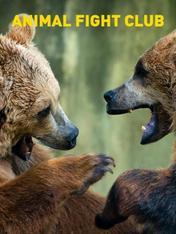 S4 Ep4 - Animal Fight Club